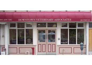 Jersey City veterinary clinic Downtown Veterinary Associates