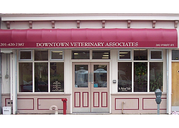 Jersey City veterinary clinic Downtown Veterinary Associates