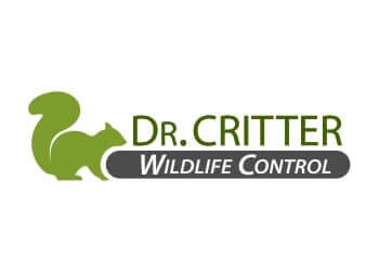 Orlando animal removal Dr. Critter