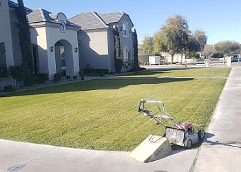 Gilbert lawn care service Dr. Love's Lawn Care