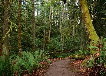 Richardson hiking trail Duck Creek Linear Park Trail