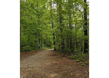 Durham hiking trail Duke Forest