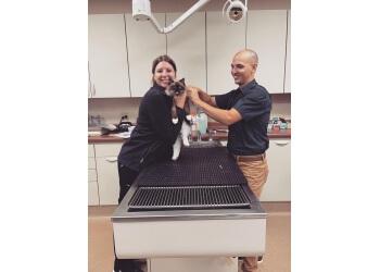 Fort Wayne veterinary clinic Dupont Veterinary Clinic