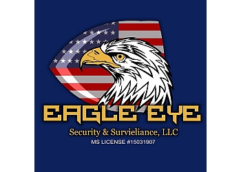 Jackson security system Eagle Eye Security & Surveillance, LLC