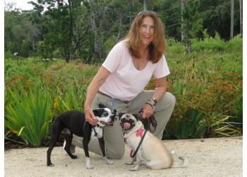 Fort Lauderdale dog walker East Paws Pet Services