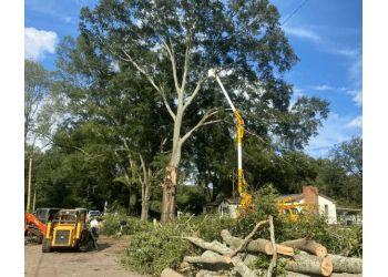 Birmingham tree service Eastern Tree Service Inc