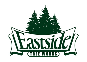 Bellevue tree service Eastside Tree Works