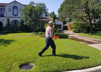 3 Best Pest Control Companies In Irving Tx Threebestrated