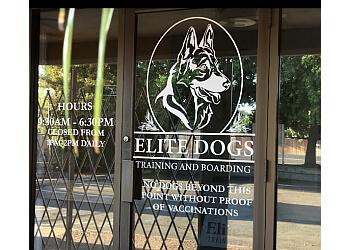 Sacramento dog training Elite Dogs Training & Boarding