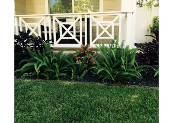 Honolulu lawn care service Elite Island Scapes