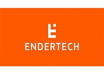 Torrance web designer Endertech