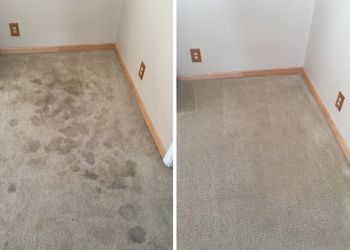 3 Best Carpet Cleaners In Santa Rosa Ca Expert