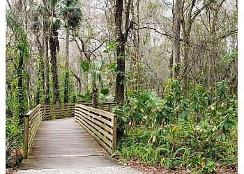 Tampa hiking trail Eureka Springs Park