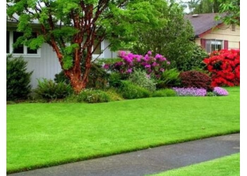 Tacoma lawn care service Ever-So-Green Lawn & Grounds Maintenance