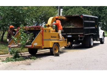 Raleigh tree service Everett Tree Service