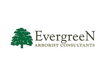 Los Angeles tree service Evergreen Arborist Consultants, Inc.