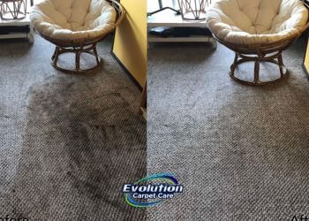 Yonkers carpet cleaner Evolution Carpet Care