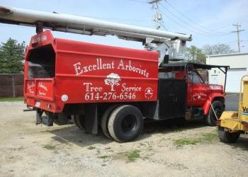 Columbus tree service Excellent Arborist Tree Company LLC