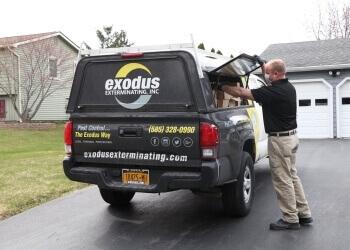 Rochester pest control company Exodus Exterminating, Inc.