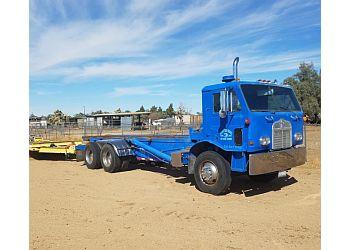 Palmdale tree service Expert Tree Service