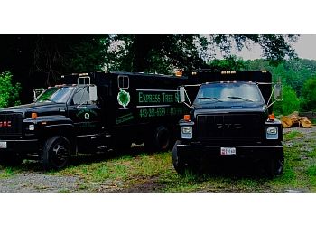 Baltimore tree service Express Tree Service