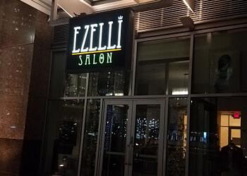 Detroit hair salon Ezelli Salon