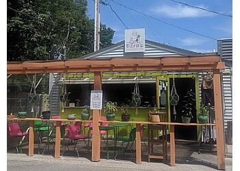 Indianapolis vegetarian restaurant  Ezra's Enlightened Cafe