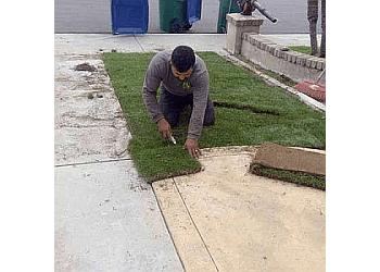 Irvine lawn care service FNL Landscaping
