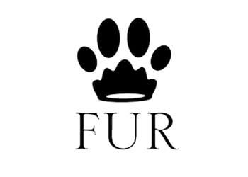 Winston Salem pet grooming Fur Pet Salon and Day Spa