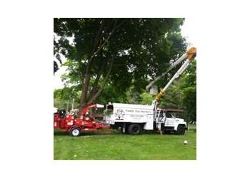 Providence tree service Family Tree Service