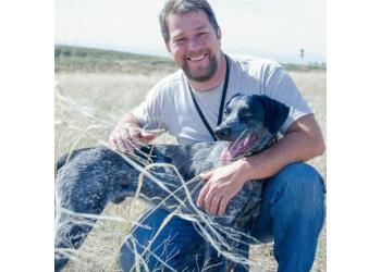Denver dog training FetchMasters, LLC