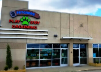 Olathe pet grooming Fetchers Play & Stay
