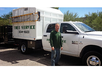 Tucson tree service Finest Tree Service
