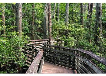 Virginia Beach hiking trail First Landing State Park
