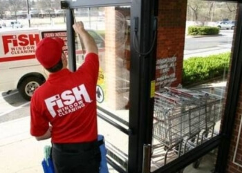Concord window cleaner Fish Window Cleaning