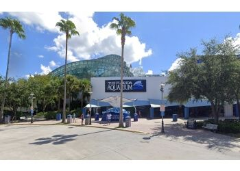 Tampa places to see Florida Aquarium