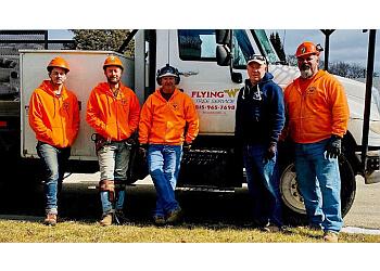 Rockford tree service Flying W Tree Service
