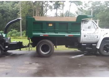 Grand Rapids tree service Forest Green Tree Service LLC