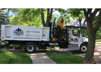 Milwaukee tree service Forester Tree Service