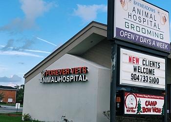 Jacksonville veterinary clinic  Forever Vets Animal Hospital at Baymeadows