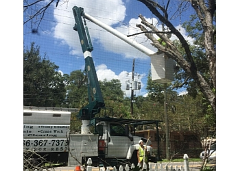 Orlando tree service Forrest Stump Tree Service