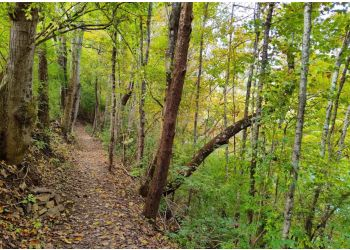 Knoxville hiking trail Fort Dickerson Park Trail