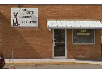 Akron pet grooming Freshcuts Dog Grooming
