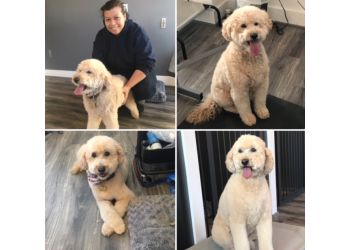 Alexandria pet grooming From Head to Tail Grooming Spa