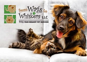 Albuquerque dog walker  From Wags To Whiskers LLC
