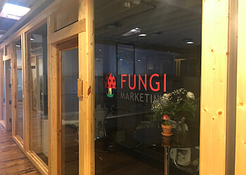 Greensboro advertising agency Fungi Marketing