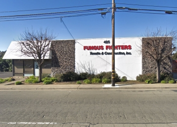 Vallejo pest control company Fungus Fighters Termites & Construction