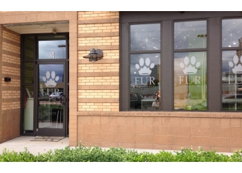 Winston Salem pet grooming Fur Pet Salon and Day Spa