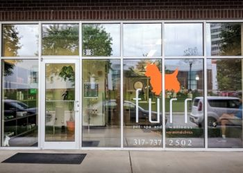 Indianapolis pet grooming Furr Pet Spa and Wellness