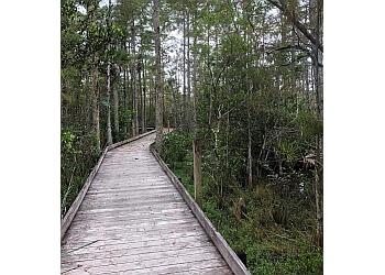 West Palm Beach hiking trail GRASSY WATERS PRESERVE